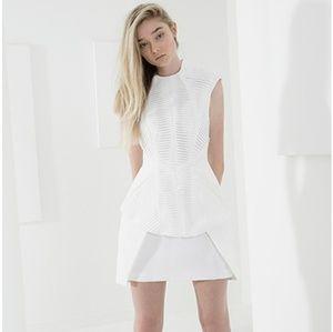 NWT Cameo Slow Motion Dress